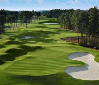Wild Wing Golf Packages Save