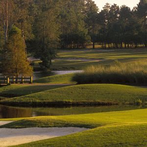 Tiger Eye Golf Packages
