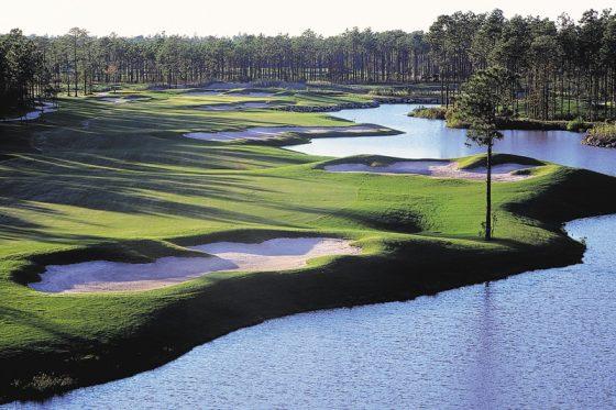 Tiger Eye Golf Clubs