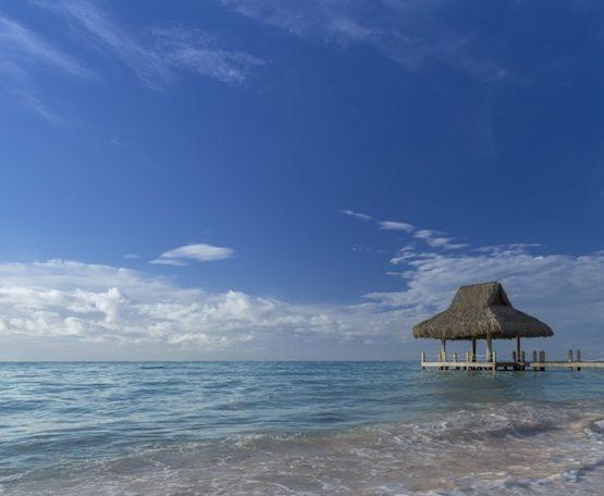 Westin Punta Cana Resort Travel Package Deals